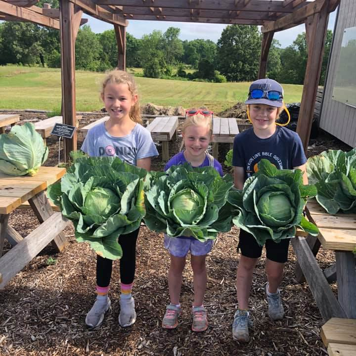 Carolyn Lewis garden classroom impact grant - children holding cabbages